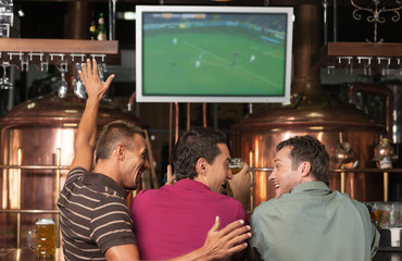Happy soccer fans. Three happy soccer fans watching a game at th
