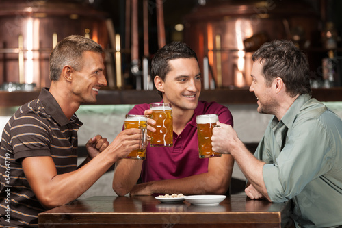Meeting at the pub. Three happy friends drinking beer at the pub