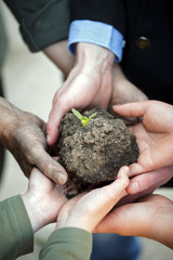 hands holding clod of earth with plant