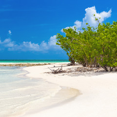 Virgin tropical beach in Cuba