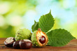 Chestnuts with leaves on wooden table on green background
