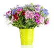 Beautiful bouquet in pail isolated on white