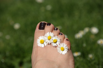 Toes with daisies