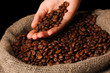 Coffee beans in hand on dark background