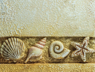 Sea Shells on Brown Background with Above Copyspace