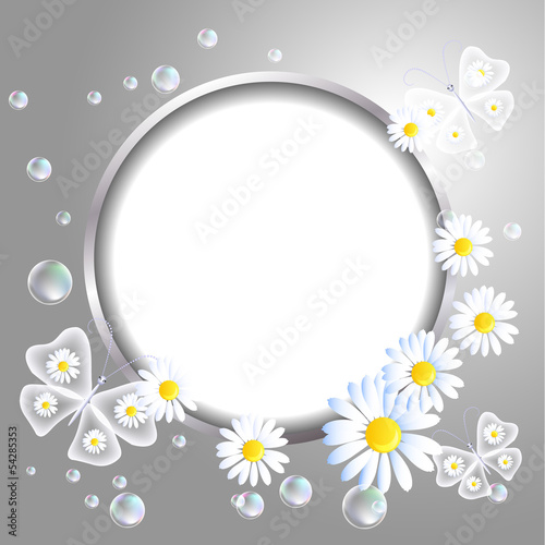 Round frame and daisy