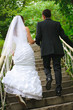 wedding couple walk up to stairs and holding hands. backview