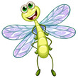 A smiling dragonfly