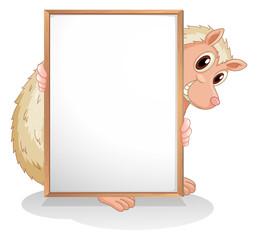 A molehog holding an empty board
