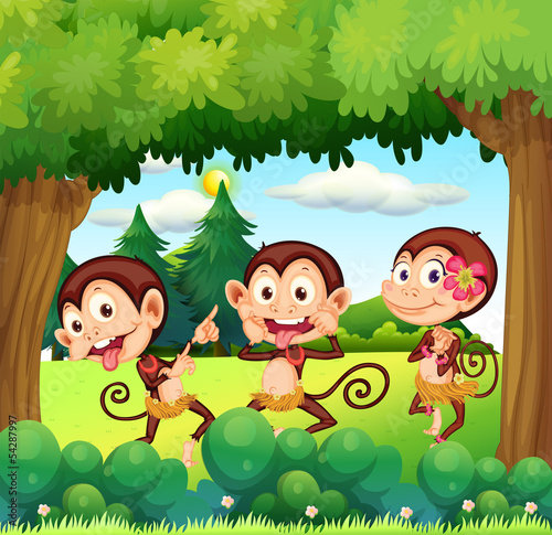 Three monkeys dancing at the forest