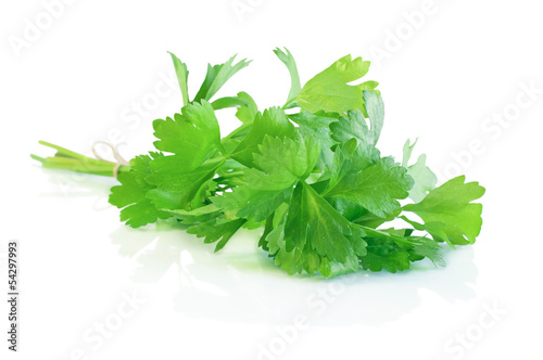 Bunch of fresh green celery isolated on white