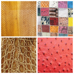 various fine leather samples collage