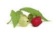 Gooseberries and raspberries close-up.