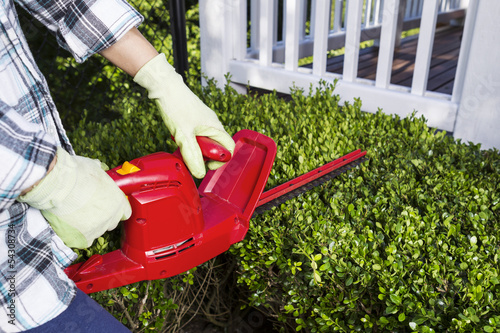 Woman using electrical power trimmer to cut bushes