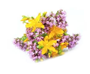 St. John's Wort and origanum flower
