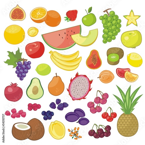 Various seasonal and exotic fruits