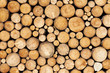 Pine timber background - 54313380
