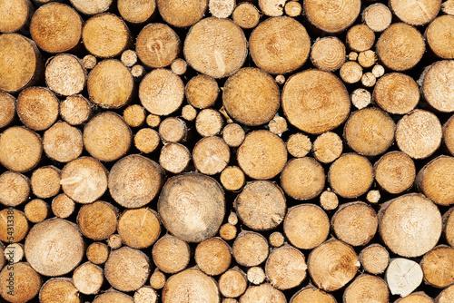 tlo-drewna-sosnowego