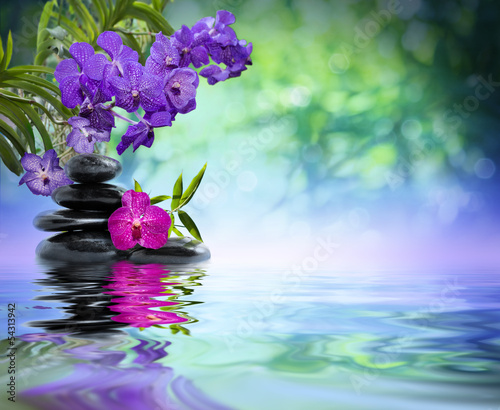 Fototapeta violet orchids, black stones on the water