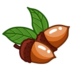 acorn isolated illustration