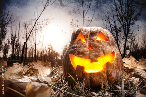Halloween pumpkin in the forest