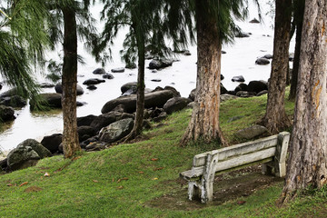 Bench in the park near water