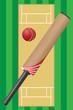 criket sport game