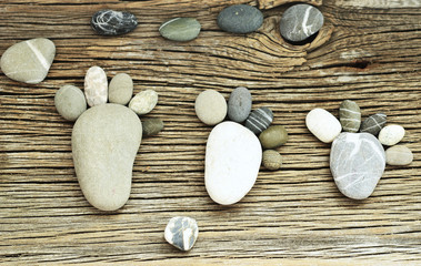pebble family