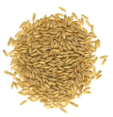 Oats on a white background.