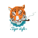 Smoking tiger portret - 54337906