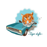 Smoking tiger portret in blue retro car - 54337922