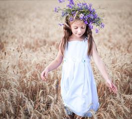 beautiful little girl  in a field of wheat
