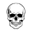 Black and white human skull with a lower jaw. - 54344913