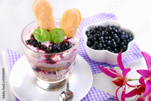 blueberry tiramisu dessert in glass