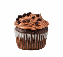 Gourmet chocolate iced cupcake