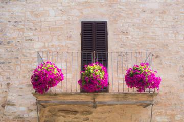 Fiori dal balcone