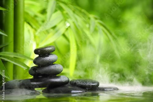Fototapeten,kurort,gesundheit,bambus,zen