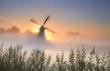 misty sunrisebehind the windmill