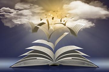 Libro_002