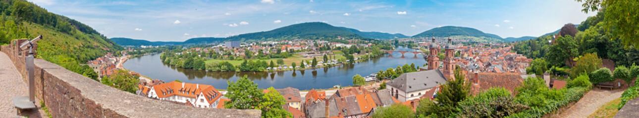 Panoramaansicht vom Miltenberg am Main