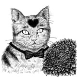 Cat with aster flower (line art)