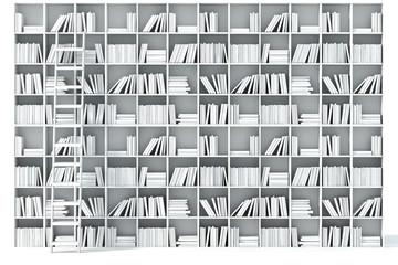 3d books on shelf