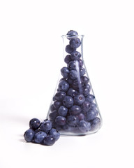 Scientific Blueberries