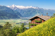Traditional mountain farm in the Alps