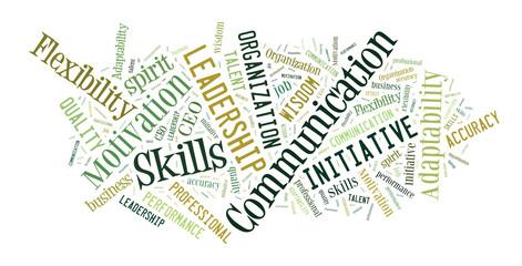 Business skills word cloud