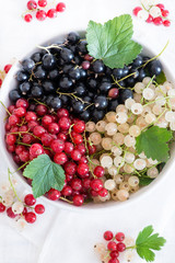 Mixed currants in a bowl