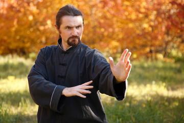 Man practicing Tai Chi in autumn park