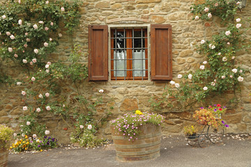 idyllic window with roses,borgo Volpaia, Tuscany