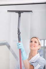 Woman Cleaning With Rubber Window Cleaner
