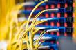 LWL Netzwerkkabel
